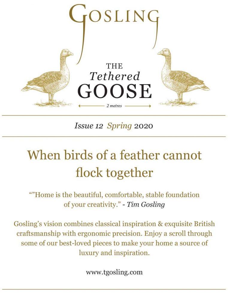 Gosling Newsletter 12